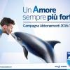Pescara Calcio, boom di abbonamenti, in 4 ore rilasciate 300 tessere
