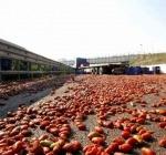 A14 camion di pomodori fa salto di carreggiata chiusa autostrada in entrambe le direzioni