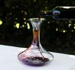 Expo, domani a padiglione Italia, protagonista vino abruzzese