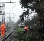 Maltempo, cadono alberi su binari sospesa linea ferroviaria Avezzano Sulmona