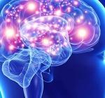 5 attività per tenere sempre attivo il cervello