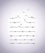 Giornata Della Memoria - foto da instagram