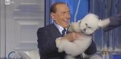 """#Berlusconi e il barboncino: """"Tre minuti e siamo amici"""". Fuori programma nel salotto di #PortaaPorta"""