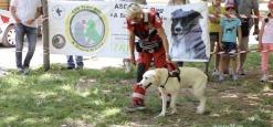 Due Giorni Con i Cuccioli, la Sensibilizzazione Contro l'Abbandono Parte Dalla Consapevolezza