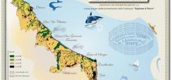 Bocciatura Parco Marino, Legambiente e WWF: ora istituzione del Parco nazionale Costa Teatina