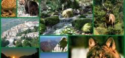 Turismo sostenibile, un nuovo piano d'azione per il Parco nazionale Abruzzo Lazio e Molise