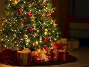 Codacons: natale 2012 consumi ridotti sopratutto sotto l'albero