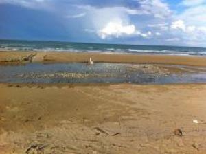 Silvia marina cna denuncia deviato il letto del fiume calvano intervenga la guardia costiera - Letto di un fiume ...