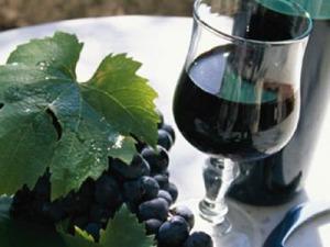 Wine tour 2013: i vini abruzzesi si presentano al mondo