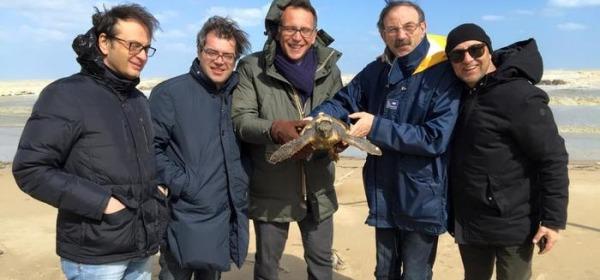Foto Ansa- ritrovamento tartaruga spiaggiata