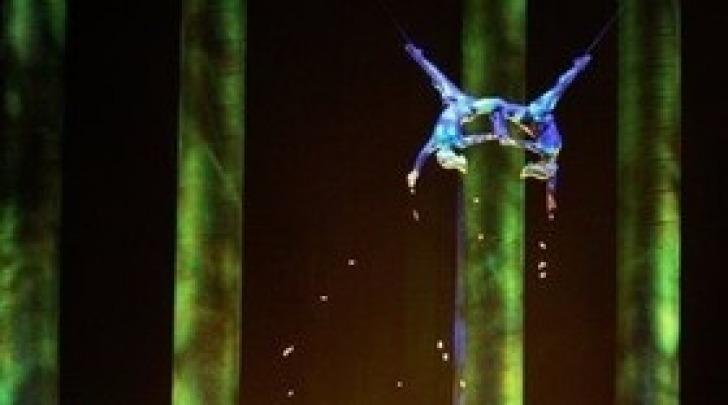 Cirque du Soleil - Sassoon