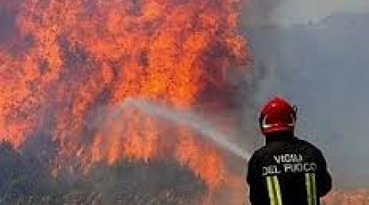 incendio macchia mediterranea