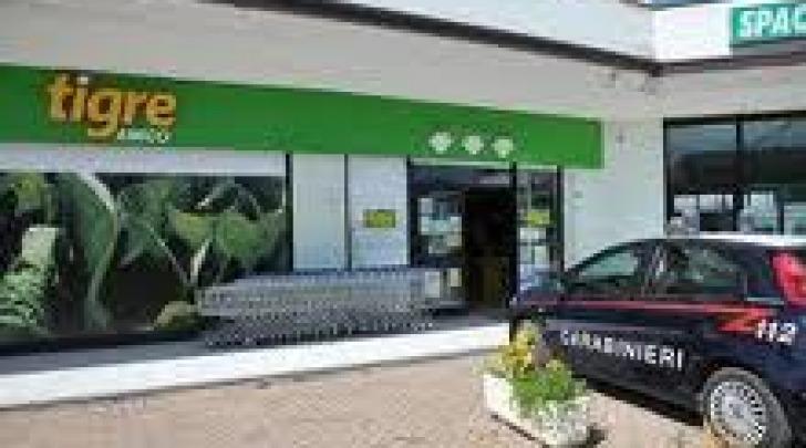 Supermercato Tigre