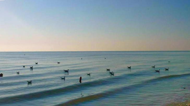 Il mare di Pineto - foto da facebook