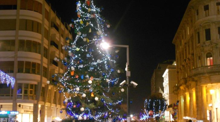 L'abete in piazza Salotto