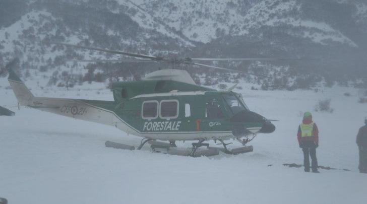 foraggio con elicotteri