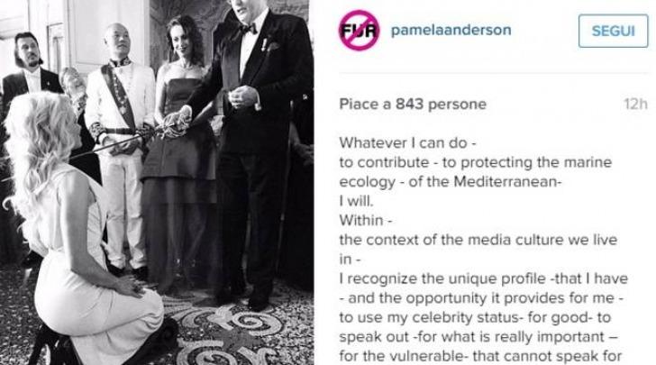Pamela Anderson, da bagnina a contessa