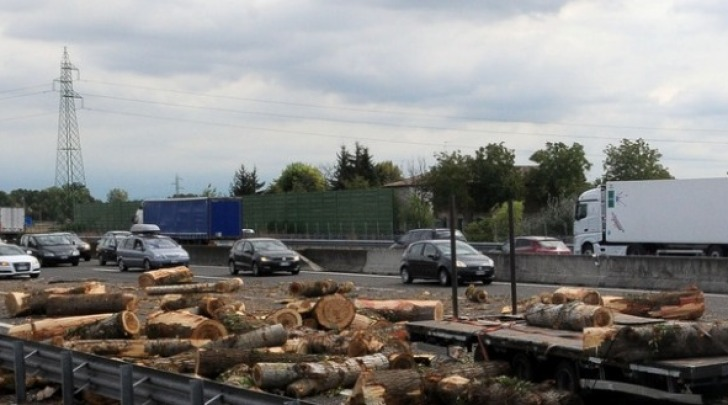 Camion perde tronchi, caos sull'autostrada Milano-Varese