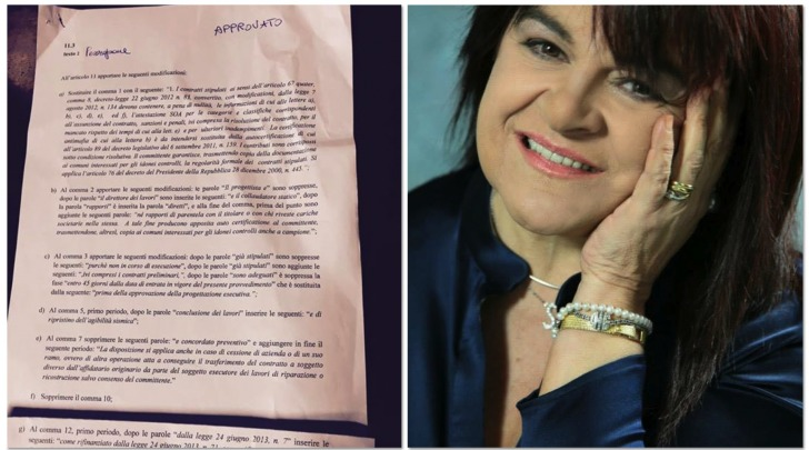 Stefania Pezzopane, Emendamenti Approvati
