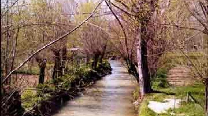 Particolare fiume Aterno