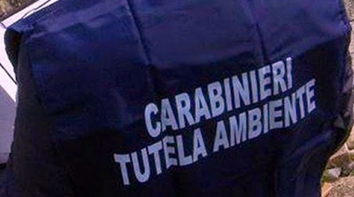 Carabinieri Noe