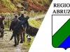 Piano faunistico venatorio 2020 24 |  ok unanime del consiglio regionale