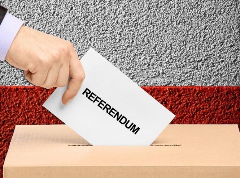 Referendum propositivo, Salvini al M5S:
