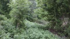 Parco Fluviale Teramo