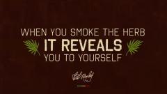 Bob Marley - Marley Natural