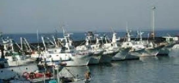 Marineria pescarese