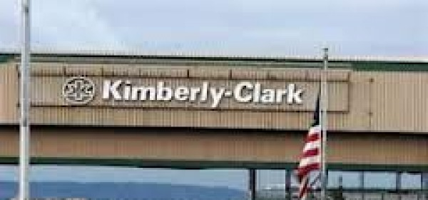 Kimberly clark - Alanno