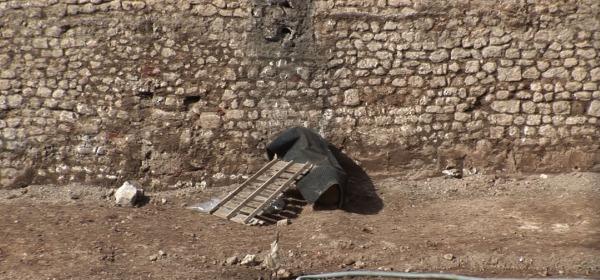 Leone coperto di Porta Barete