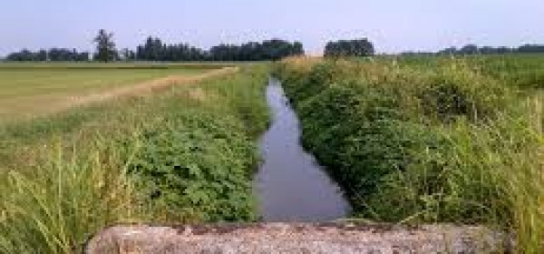 canale irrigazione