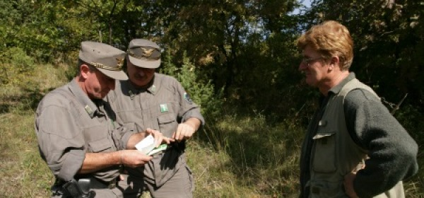 Controlli forestale