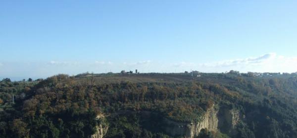 Colle Foresta di San Vito