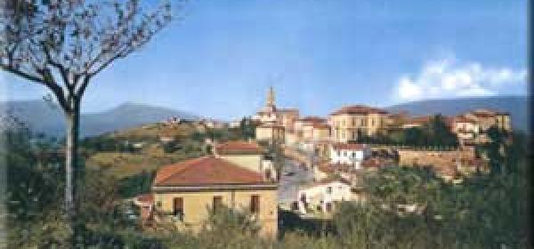 Bellante