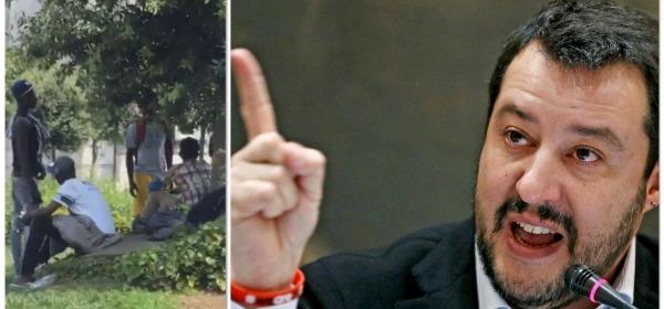 migranti - Salvini