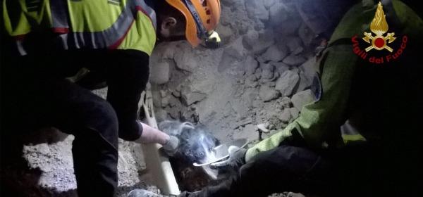 salvataggio del cagnolino dalle macerie di Norcia