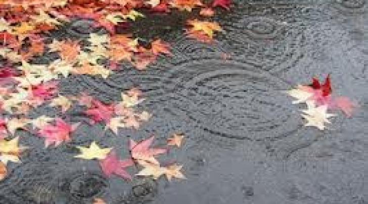 Pioggia autunnale