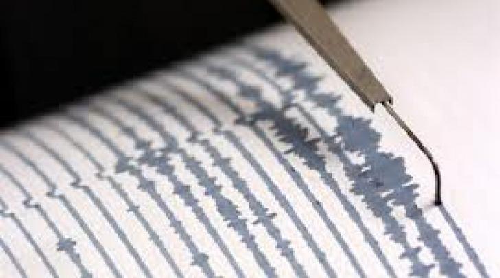 Grafico scossa sismica