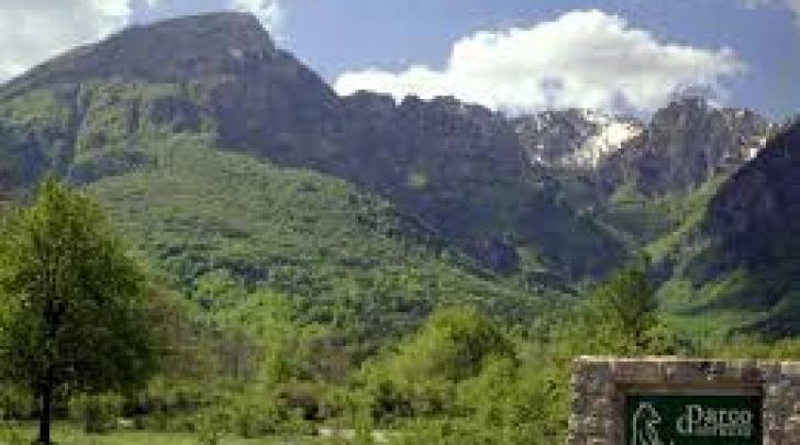 Parco d'Abruzzo, Lazio e Molise