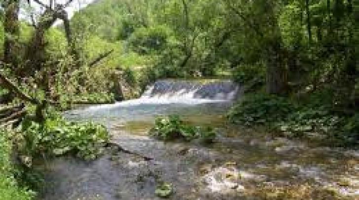 Un tratto del fiume Giovenco