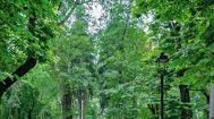 Parco Torlonia