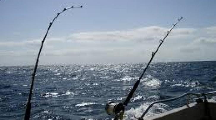 Pesca da traino