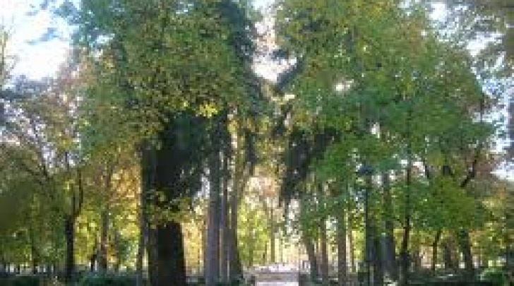 Il parco ex Arssa di Avezzano