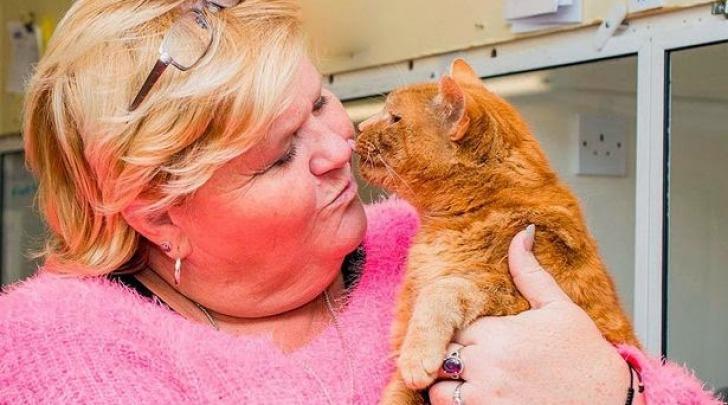Garfield il gatto e Julie Calder