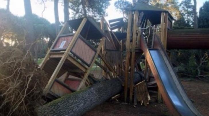 Caduta alberi su parco giochi