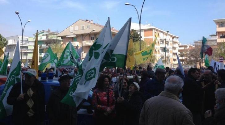 Proteste contro inceneritore a biomasse Powercrop