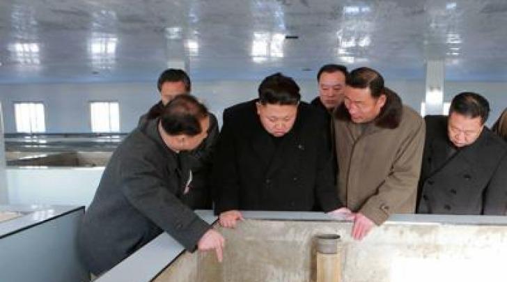 Kim Jong Taedong acquario