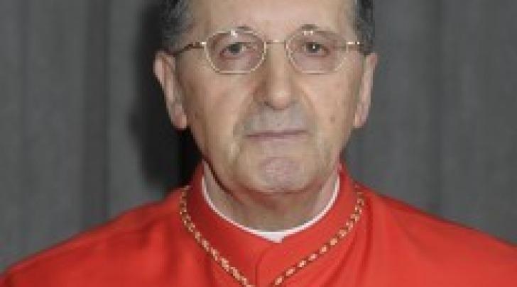 Cardinale Stella